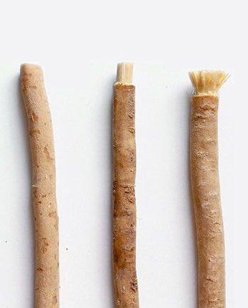 khasiat kayu sugi